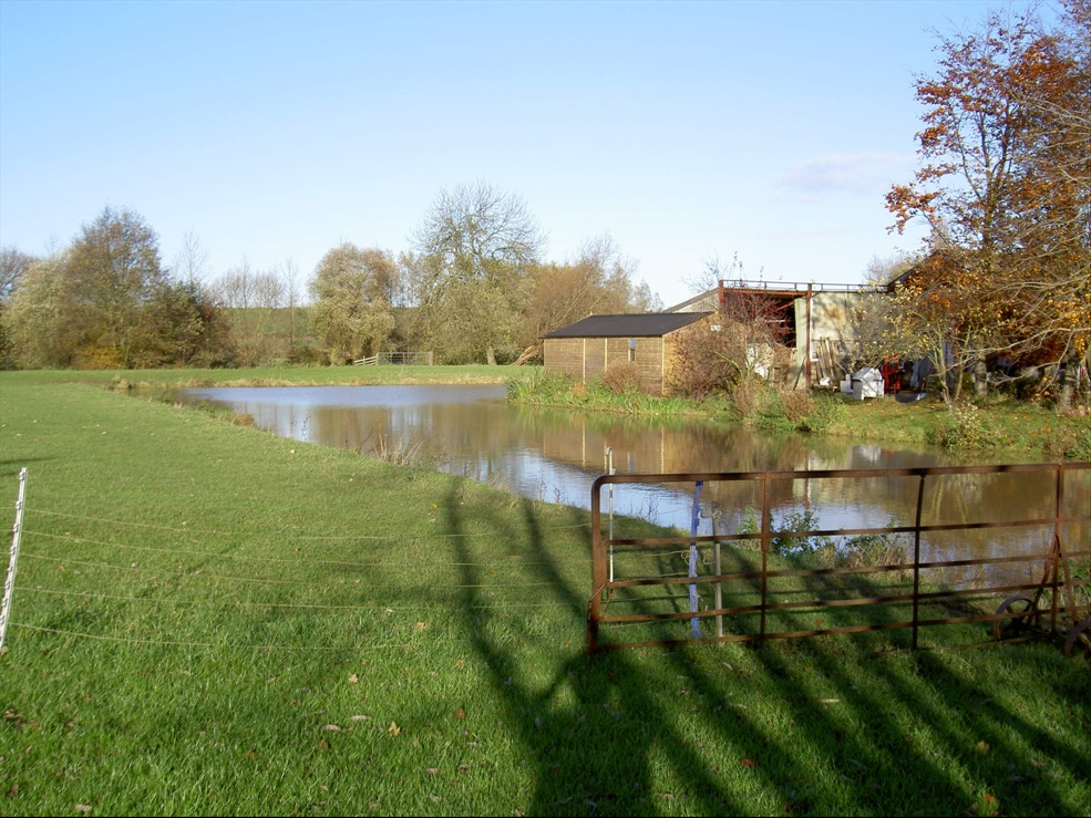 Manor Moat